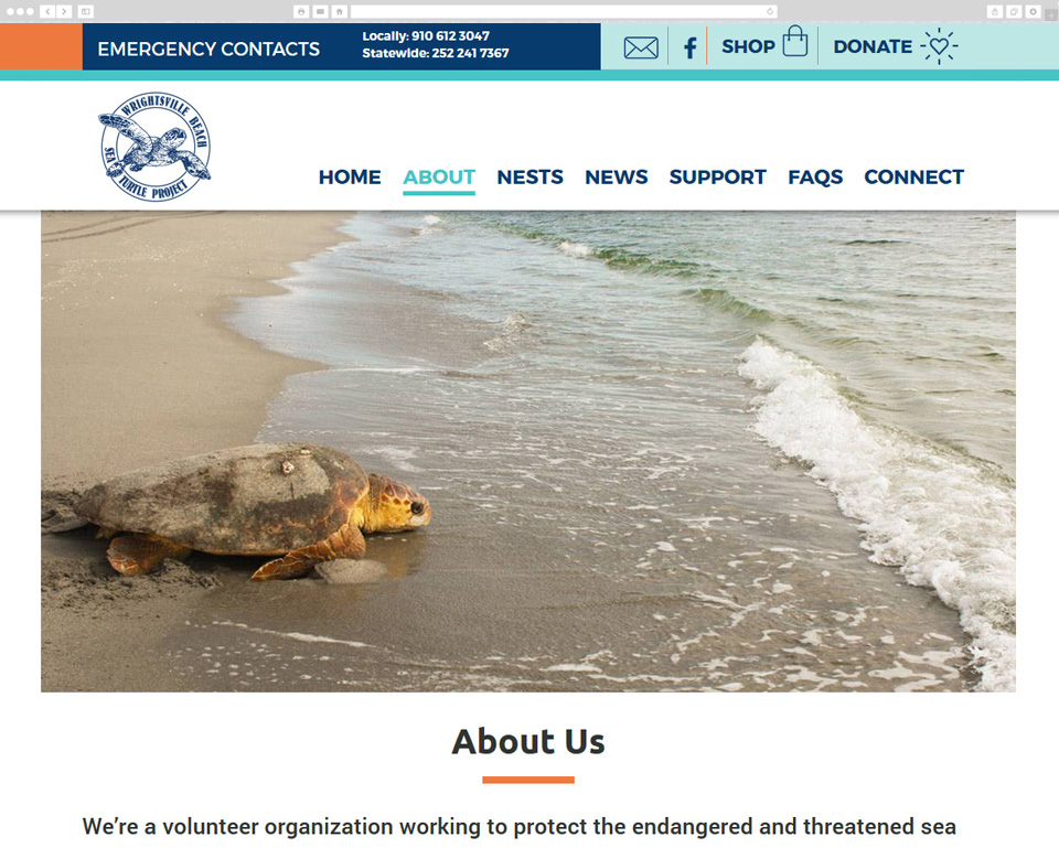 Wrightsville Beach Sea Turtle Project screenshot
