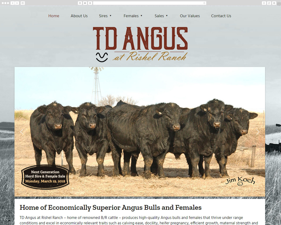 TD Angus desktop screenshot
